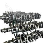 JICHAI Z12V190B G12V190ZL Crankshaft Unit