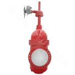 42.0Mpa  single flashboard plate gate valve with diversion hole