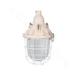 Bcd series Bcd250 explosion-proof lamp