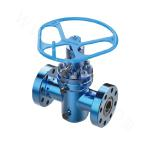 Expansion Gate Valve Assembly