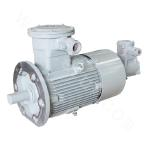 YBBP80-355-2 Explosion-proof Motor