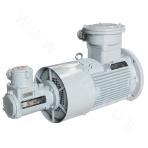 YBBP250-355-12 Explosion-proof Motor