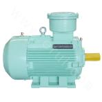 YBBP80~-355-4 Explosion-proof Motor
