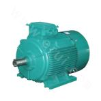 Low-voltage motor Y2 series speed 600 type