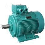 Low-voltage motor YPT2 series speed 600 type