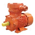YBK2 Special Three-phase Asynchronous Motor for Coal Mine