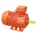 YFB Dust Ignition-proof Three-phase Asynchronous Motor