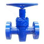 3000PSI flat gate valve