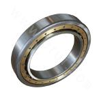Cylindrical Roller Bearing without Rib-free Inner Ring