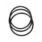 D4-4-66 O-ring (155X8.6)