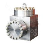 DLFX21/52 swing check valve