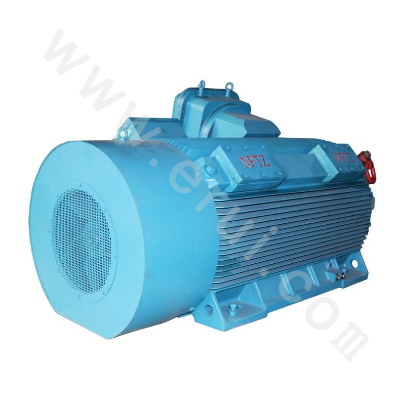 185-2500kW IP55 YB2 Series High - Pressure Explosion Isolating Three - Phase Asynchronous Motor