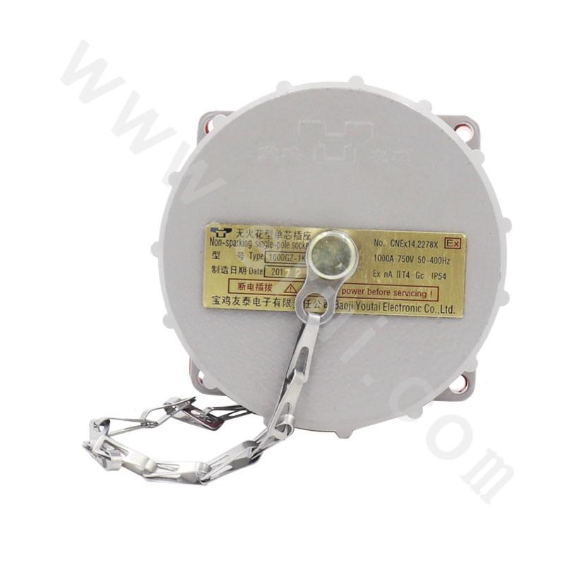 ExnAIIT4Gc IP54 Non-sparking Single-pole Socket
