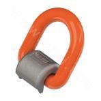 Welded D-ring