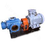 HZS/K58-24 Double-screw Pump