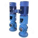 HZS/K160-96 Double-screw Pump