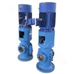 HZS/K160-32 Double-screw Pump
