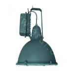 TG701 Shed-used Electrodeless Lamp