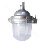 NFE9112 Emergency Anti-dazzle Dome Lamp