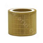 CE080100 Air Filter