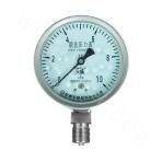 YE-100B stainless steel diaphragm pressure gauge