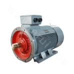 Y2 and Y3 series small size low voltage three-phase asynchronous motor