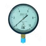 YE-100 Capsule Pressure Gauge