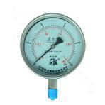 YN-100ZT Series Shock-resistant Pressure Gauge