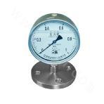 YPF-150B-F-1 Series Diaphragm Pressure Gauge