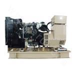 Perkins Generator Unit
