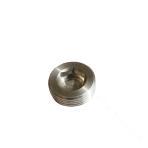 316-Hexagonal Socket Cylindrical Head Pipe Plug