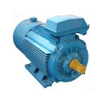 Y2VP-100 Series Variable-Frequency Adjustable-Speed Motor