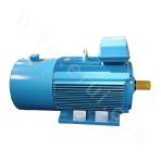 Y2VP-132 Series Variable-Frequency Adjustable-Speed Motor