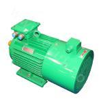 Y2VP-200 Series Variable-Frequency Adjustable-Speed Motor