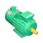Y2VP-250 Series Variable-Frequency Adjustable-Speed Motor