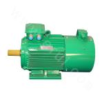Y2VP-450 Series Variable-Frequency Adjustable-Speed Motor