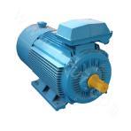 Y2VP-90 Series Variable-Frequency Adjustable-Speed Motor