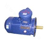 YB3-100 Explosion-proof Three-phase Asynchronous Motor