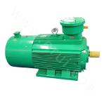 YBBP-250 Series High-efficiency Explosion-proof Three-phase Asynchronous Motor