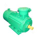 YBBP-100 Series High-efficiency Explosion-proof Three-phase Asynchronous Motor