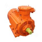 YBX3-100 Series High-efficiency Explosion-proof Three-phase Asynchronous Motor
