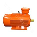 YBX3-200 Series High-efficiency Explosion-proof Three-phase Asynchronous Motor