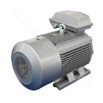 YE3-280 Series Ultra High-efficiency Three-phase Asynchronous Motor