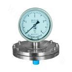 YPF-100B Series Diaphragm Pressure Gauge