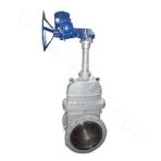 Parallel Double Ram Gate Valve