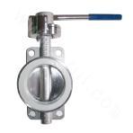 Fluorine-lined butterfly valve