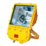 BFC8110HN Explosion-proof Floodlight