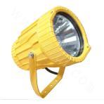 BTC8200/BTC8200A Explosion-proof Floodlight