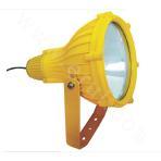 BTC8210 Explosion-proof Floodlight