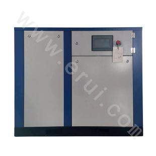 High-energy-injected Screw Air Compressor